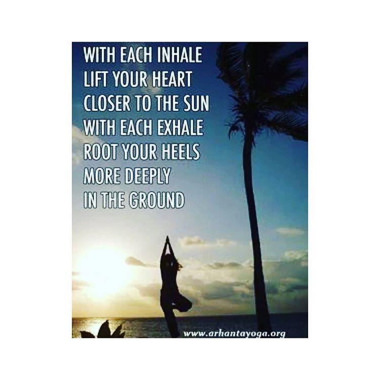 arhanta arhantayoga arhantayogaashram hathayoga yoga yogagram igyoga yogadaily yogaeveryday yogaeverywherehellip