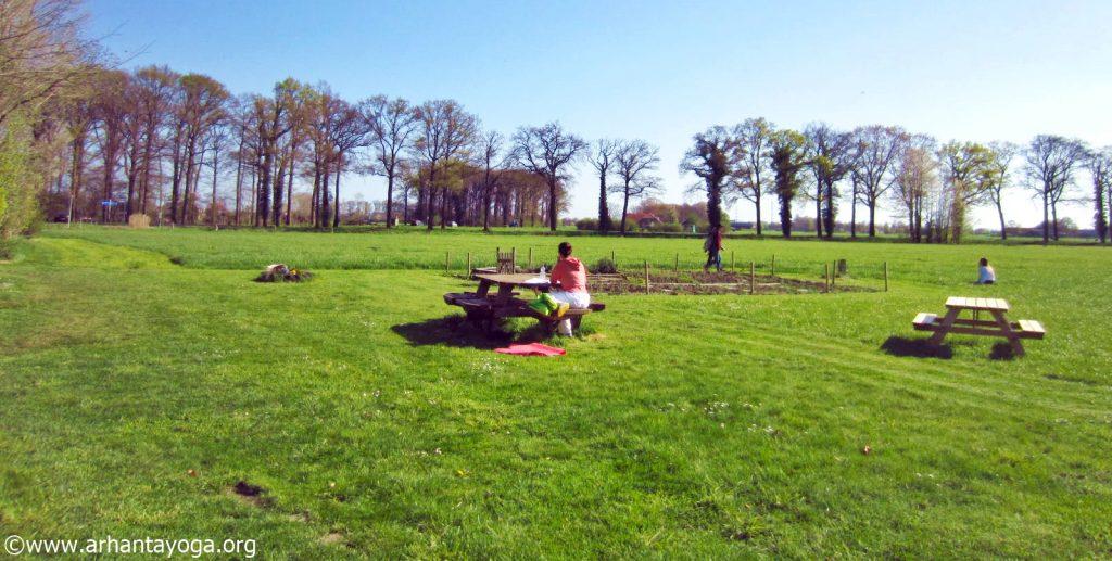 Arhanta Yoga Ashram Netherlands ttc summer