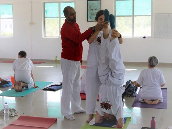 50 uur Yoga docenten Opfris Cursus